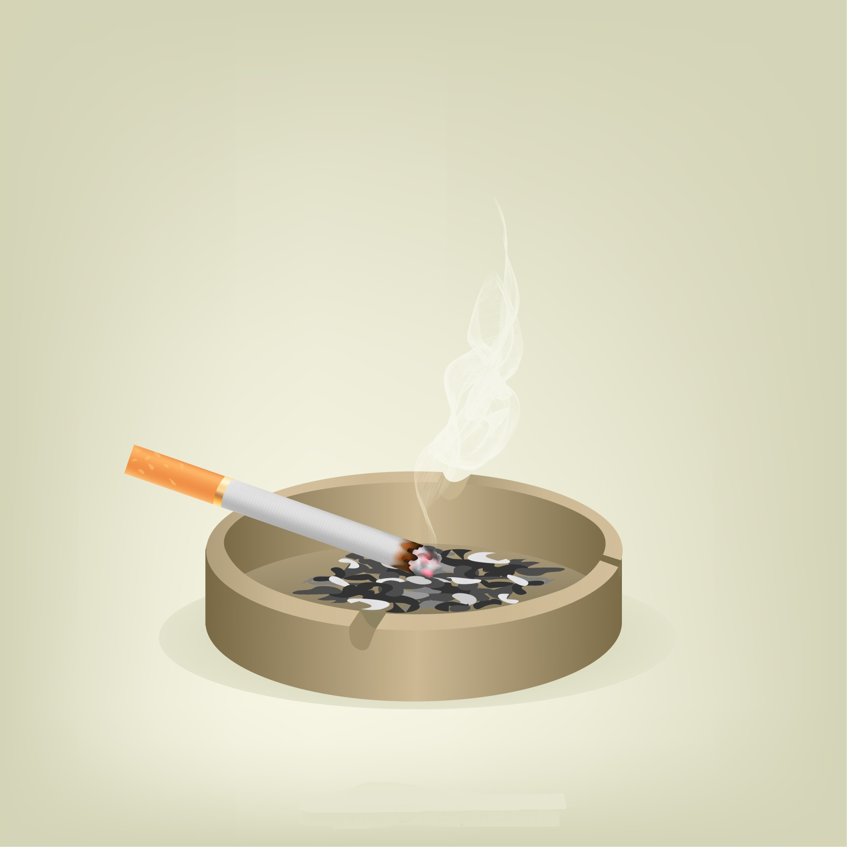 Cigarette butts or filters are pollutants with serious environmental consequences.